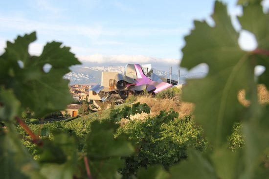 Hotel Marques de Riscal a Luxury Collection Hotel: View from the vines