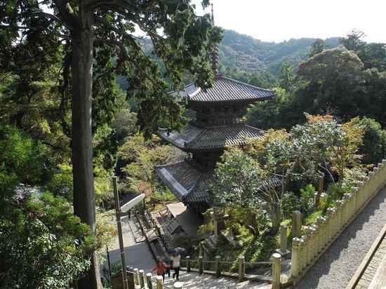 Kasai, Japan: 三重塔を上から
