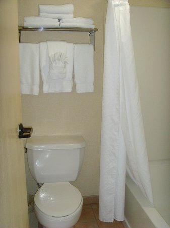 Holiday Inn Hotel & Suites Anaheim (1 BLK/Disneyland): Bathroom