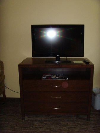 Holiday Inn Hotel & Suites Anaheim (1 BLK/Disneyland): TV