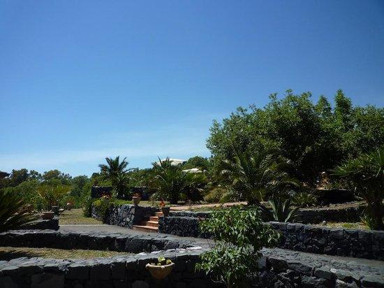 Casa Gallida: Jardin