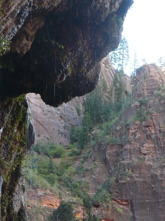 Weeping Rock Trail