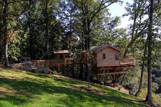 Primland: Barn Owl Treehouse Exterior