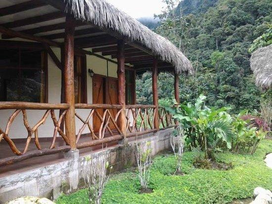 Mindo Rio Hosteria: Garden