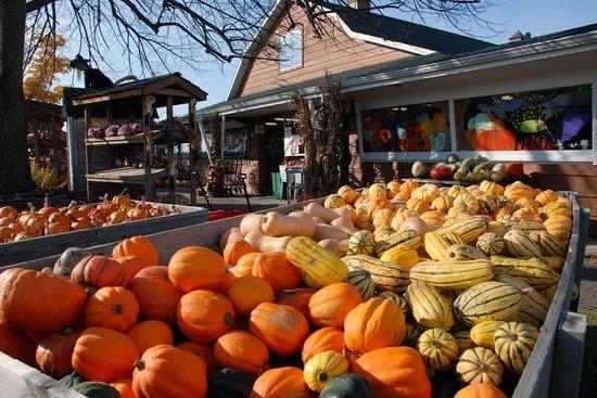 Door County Photos Featured Images Of Door County Wi