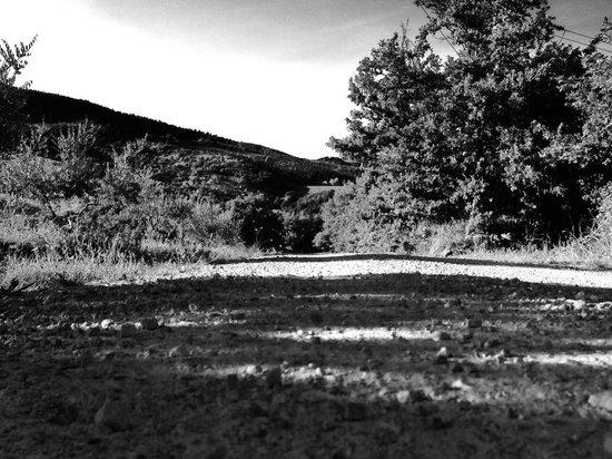 La Provenca: La strada