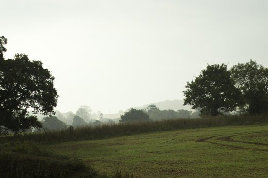 Mill Farm: The morning view from our room, mid-October
