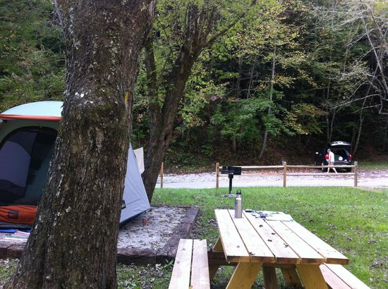 Camp LeConte Luxury Outdoor Resort : Tent Site