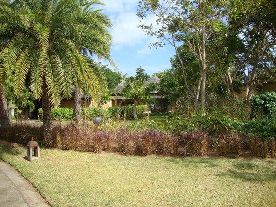 Maradiva Villas Resort and Spa: Maradiva grounds