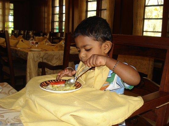 Vivanta by Taj - Sawai Madhopur Lodge: Dining hall