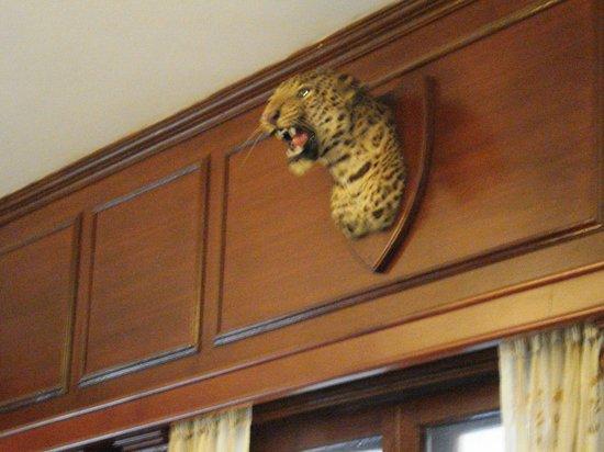 Vivanta by Taj - Sawai Madhopur Lodge: Hotel interior