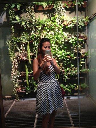 Hansar Bangkok Hotel : In Room Plant Wall