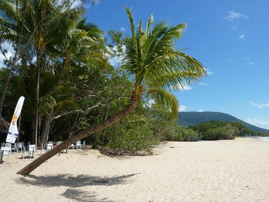 Kewarra Beach Resort & Spa : La plage