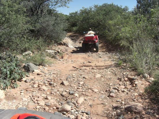 Arizona ATV Adventures: Some of the rougher trail.