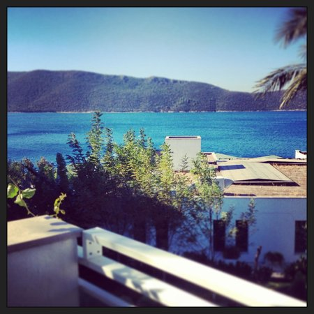 Bodrum Holiday Resort & Spa: View from our room.........beautiful