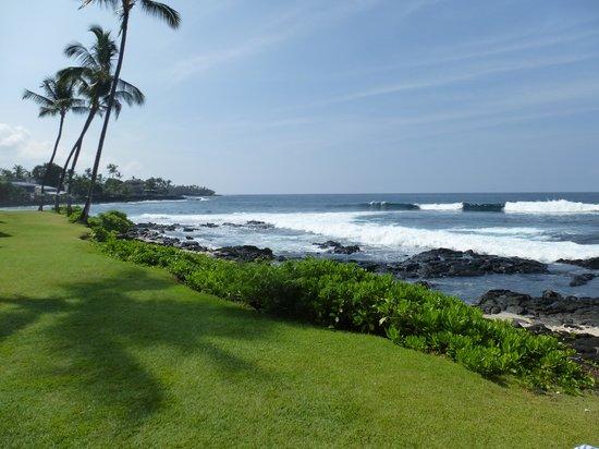 Kona Reef Resort: Beach