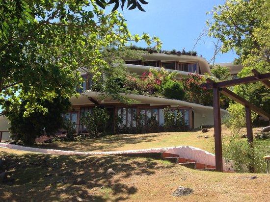 Mount Hartman Bay Estate : Gorgeous hotel