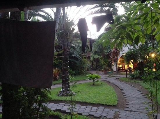 El Encanto Inn: view of the garden
