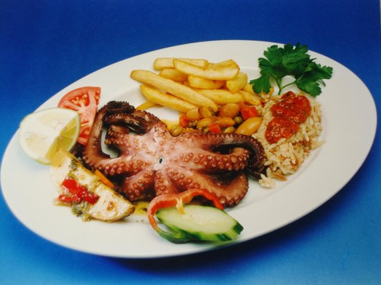 YIANNIS : OCTOPUS