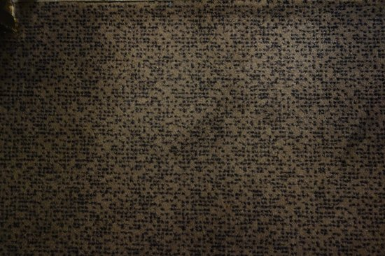 Hotel Le Panoramic : Stained rug in room