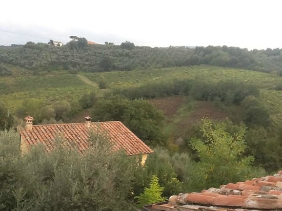 Agriturismo le Caggiole: view from room