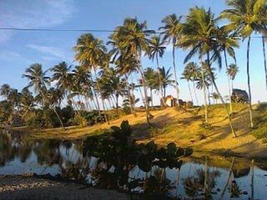 Arembepe, BA: meu paraiso