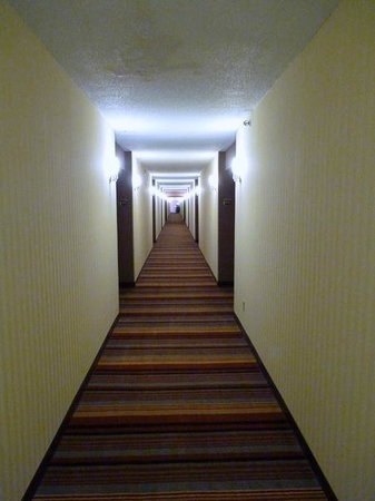 Sheraton Roanoke Hotel and Conference Center: VERTIGO 101