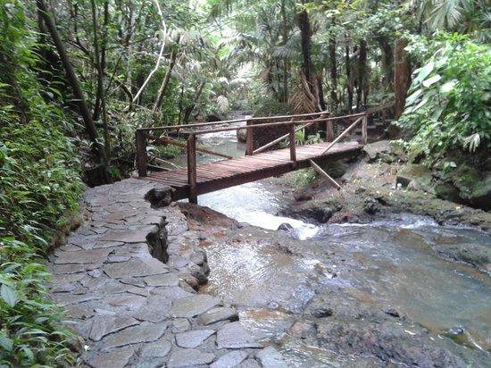 Termales del Bosque: Puente a las piscinas