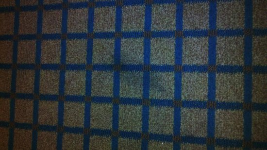 Embassy Suites by Hilton Chicago - O'Hare/Rosemont: MORE CARPET STAINS