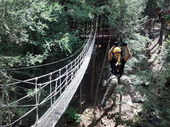New York Zipline Adventure Tours : Swinging rope bridge