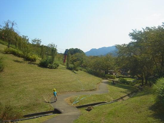 Sagami Lake Resort Pleasure Forest: 下り坂、子供は楽しい、大人は疲れる