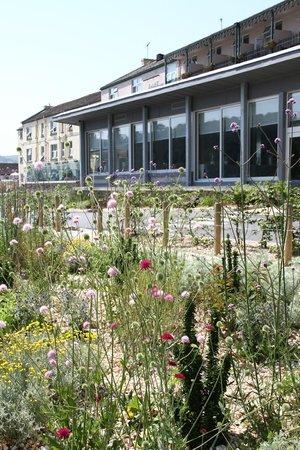 Dart Marina Hotel and Spa: Riverside Garden