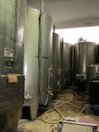 Winery Dourakis: after the process