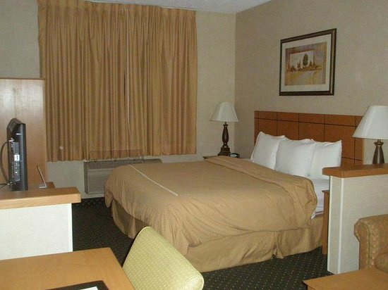 Comfort Suites : Bed