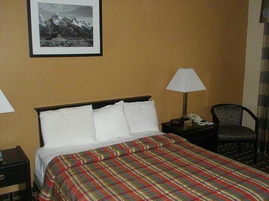 Travelodge South Burlington : bed