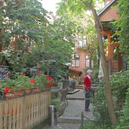 Hôtel Chez Norbert : Wonderland