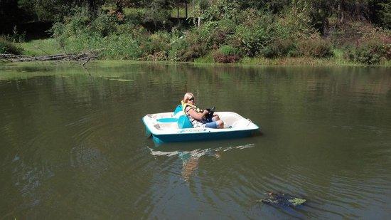 Pinegrove Family Dude Ranch: Lake paddle boat and fishing