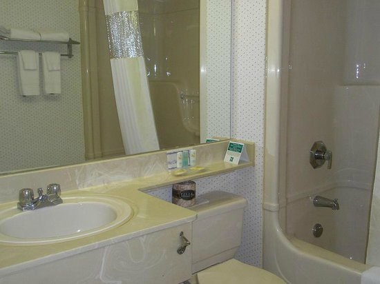 Quality Hotel & Suites Airport East : Sink and bath area