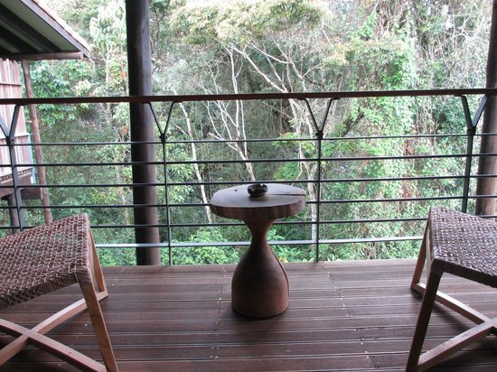 Nyungwe Forest Lodge: Balcony view