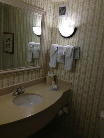 Hilton Garden Inn Chicago Downtown/Magnificent Mile : Bathroom Sink
