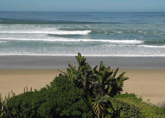 Xanadu Guest Villa: Ocean View