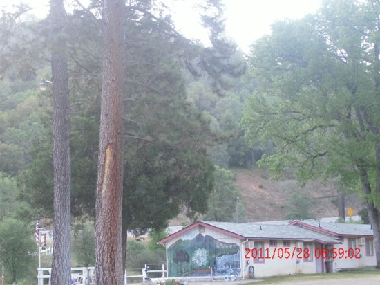 Muir Lodge Motel: view from room