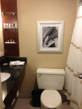 Minneapolis Airport Marriott : Bathroom