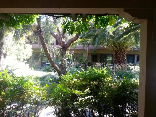 El Pueblo Inn: View from the room