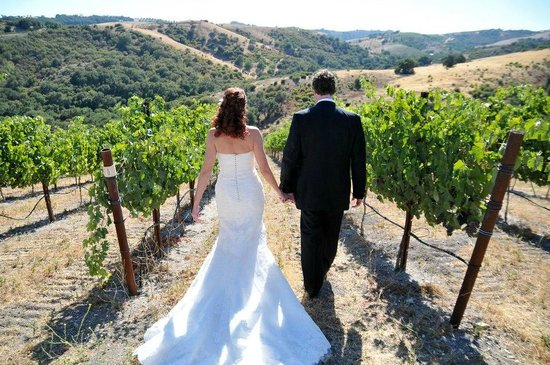 Calcareous Vineyard: Vineyard Weddings at Calcareous in Paso Robles