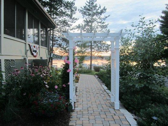 Lake Ripley Lodge Bed & Breakfast: Sunset through towering pines
