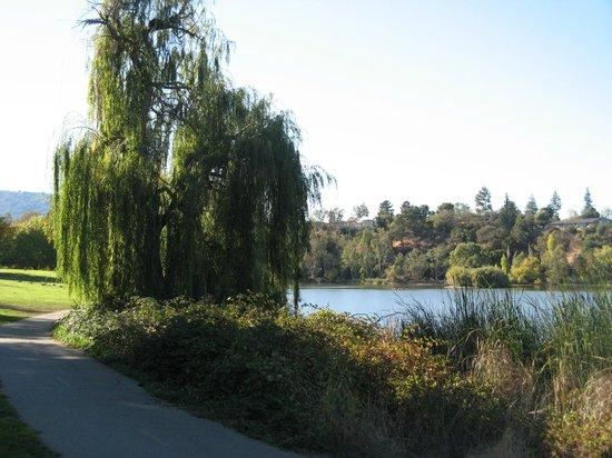 Vasona Lake County Park: Vasona Lake looking West...It's a beautiful Park!