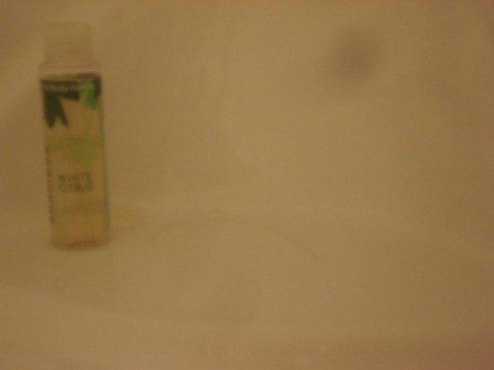 Holiday Inn Express Springfield: Hair in soap dish in bath tub