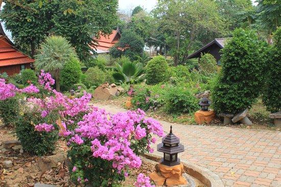 Phi Phi Natural Resort: территория отеля