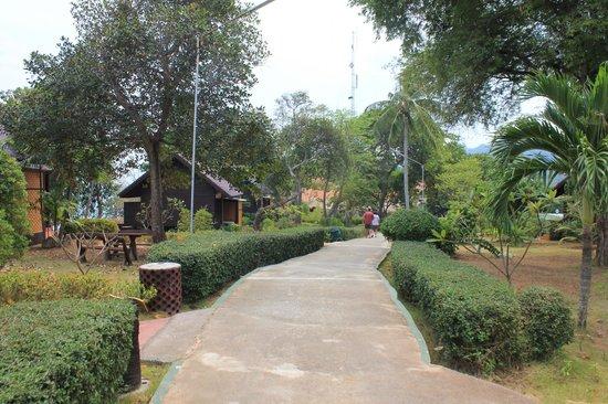 Phi Phi Natural Resort: территория